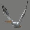 01 34 17 750 pelican 05 4