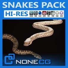 Pack - Snakes 3D Model