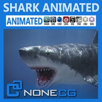 Animated White Shark 3D Model