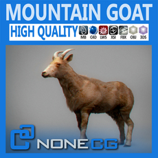 Mountain Goat 3D Model