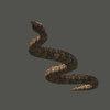 01 34 35 438 snake 03 4