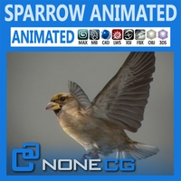 Animated Sparrow