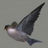 01 34 43 57 swallow 01 4