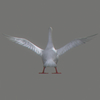 01 34 47 199 swan 16 4
