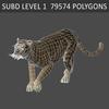 01 34 50 281 tiger 05 4
