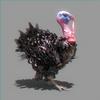 01 34 57 635 turkey 02 4