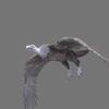 01 35 00 868 vulture white 0005 4