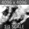01 35 04 686 whale 06 4
