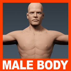Human Male Body - Anatomy 3D Model