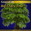 01 43 38 915 big cherry tree thumb00 4
