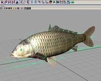 CoolFish_Dynamic+Auto+FK_TEXT for Maya 1.0.0