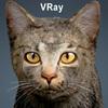 01 56 59 455 cat vray 00 4