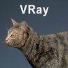 01 56 59 667 cat vray 03 4