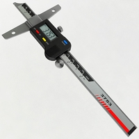 Digital Depth Gauge 3D Model