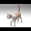 02 13 12 130 cat1 4