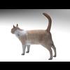 02 13 12 480 cat4 4