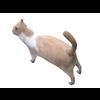 02 13 12 548 cat5 4