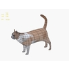02 13 12 757 cat70000 4