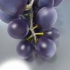 02 16 06 915 black grapes preview 02 4