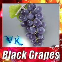 Black Grapes High Detailed + High resolution textures 3D Model