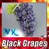 02 16 07 274 black grapes preview 0 4