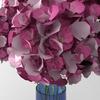 02 18 22 89 bouquet3 2 4