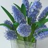 02 19 14 887 bouquet5 2 4