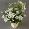 02 19 20 129 bouquet9 2 4