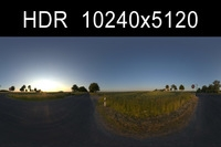 Road in field 2 HDRI Environment (High resolution)