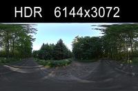 Forest 2 HDRI Environment (High resolution)
