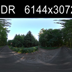 Forest 2 HDRI Environment (High resolution)