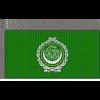 02 46 16 195 arab leaguemi 4
