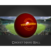 02 46 37 466 cricket hard ball 01 4