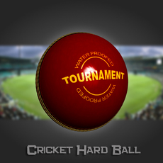 Cricket Hard Ball 3D Model