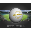 02 46 37 742 cricket hard ball 02 4