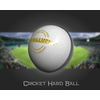 02 46 37 797 cricket hard ball 03 4