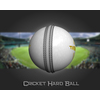 02 46 37 894 cricket hard ball 04 4