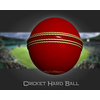 02 46 38 115 cricket hard ball 06 4