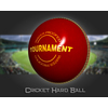 02 46 38 184 cricket hard ball 07 4