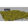 02 48 57 515 scatter trees 2 4