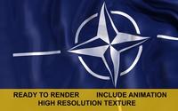 NATO 3d Flag 3D Model