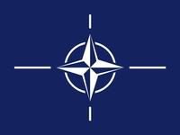 NATO texture Flag
