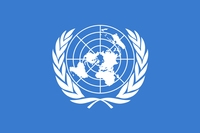 United Nations texture Flag