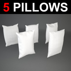 5 rectangular Pillows 3D Model