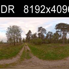 Field Path Cloudy 1 HDRI Environment (high res)