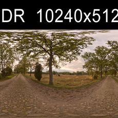 Road with trees HDRI Environment (high res)