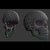 03 02 15 856 wire skull 4