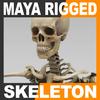 03 03 28 243 skeletonmayarigged th001 4