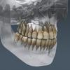 03 03 30 954 skeletonmayarigged th020 4