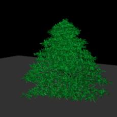 hi poly spruce tree 3D Model
